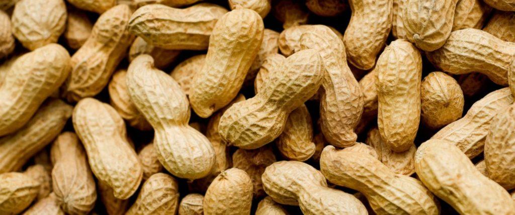 Что такое арахис - цена на него и полезные свойства арахиса