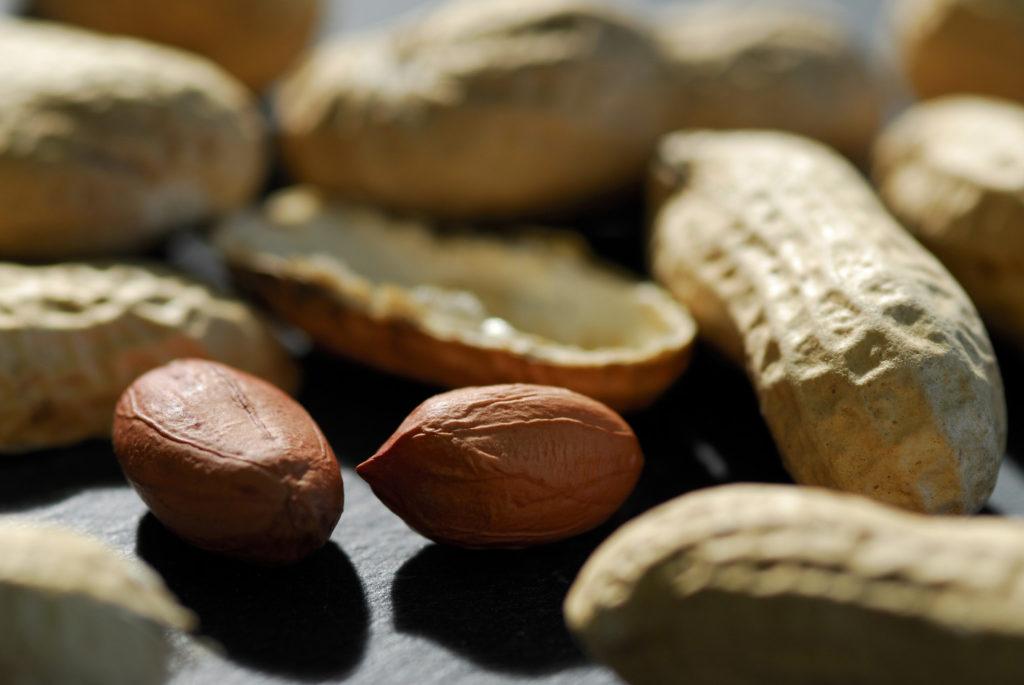Что такое арахис: восемь самых интересных фактов об орехе